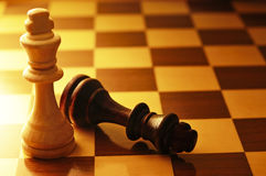 Two King chess pieces Stock Photography