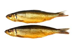 Two kippers, smoked herring on white background Royalty Free Stock Photos