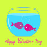 Two kissing fishes in the aquarium. Happy Valentines day card. Royalty Free Stock Photography