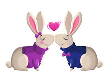 Two kissing rabbits isolated on white background. Stock Image