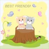 Two kittens. Best friends Stock Photos