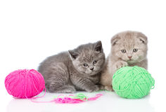 Two kittens playing with a ball  on white background Stock Images