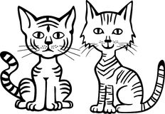 Two Kitties Royalty Free Stock Image