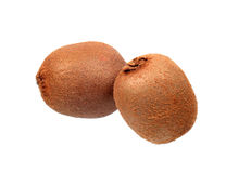 Two kiwi fruits Stock Photography