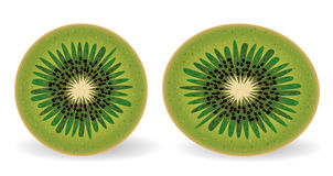 Two kiwis in a section, round and oval Royalty Free Stock Photos