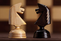 Two knight on chessboard background Royalty Free Stock Photography