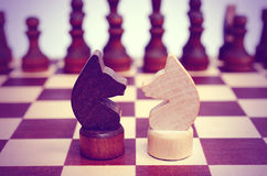 Two knight on a chessboard. Confrontation. Stock Photos