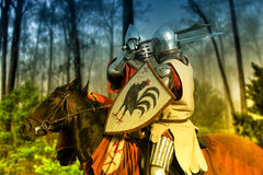 Two knights fighting in a Wooded Landscape Royalty Free Stock Image
