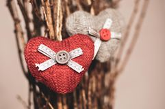 Two knitted hearts hanging on a branch. Symbol of love and Valentine`s day celebratione. Toned foto.  stock photo