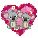 Two Koalas Royalty Free Stock Photo