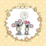 Two Koalas Royalty Free Stock Photo