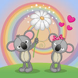 Two Koalas. Valentine card with two Koalas on a meadow Royalty Free Stock Image