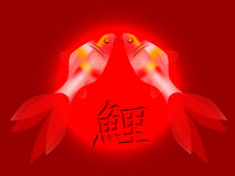 Two  koi carps with hieroglyph Royalty Free Stock Images