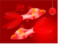 Two  koi carps with hieroglyph meaning koi Stock Photos