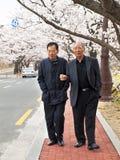 Two korean men walking Royalty Free Stock Photo