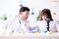 The two lab doctor testing food products. Two lab doctor testing food products Royalty Free Stock Photography