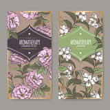 Two labels with Damask rose and jasmine color sketch. Royalty Free Stock Photo