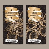 Two labels with Lemon and orange blossom on black background. Stock Image