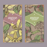 Two labels with Vanilla, Cinnamon color sketch on vintage background. royalty free illustration