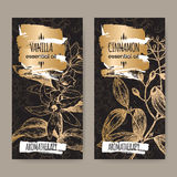 Two labels with vanilla and cinnamon sketch on black background. Royalty Free Stock Image