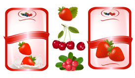 Two labes with red cherries. Vector Royalty Free Stock Image