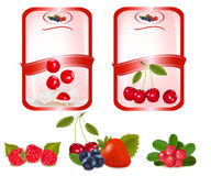 Two labes with red cherries. Vector Royalty Free Stock Photography