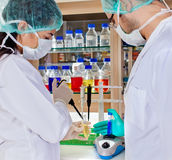 Two laboratory technicians conducting a test. Stock Image