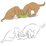 Puppies Sharing Food Stock Photography