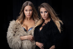 Two ladies in fur coats Stock Photography