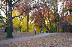 Two ladies stroll in the autumn park stock photo
