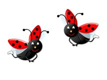 Two ladybirds. Ilustrations two cute ladybirbs at fly Stock Images