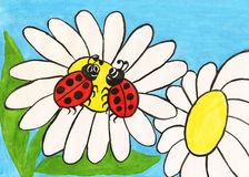 Two ladybirds on camomile, painting Royalty Free Stock Images