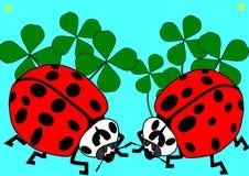 Two ladybugs, shamrocks and turquoise background Royalty Free Stock Photo