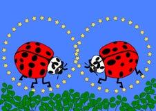 Two ladybugs with yellow stars, blue background and many shamrocks Royalty Free Stock Images