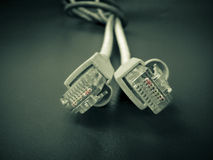Two Lan cables Royalty Free Stock Images