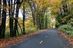Road for biking. Two lane biking road through yellow autumn woods Royalty Free Stock Photo