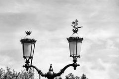 Two lantern and  a dove. On the street, one sits a dove in the background sky, light, old, black, facilities, equipment Royalty Free Stock Image