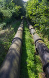 Two large black water pipes, converging in distance. Stock Photography
