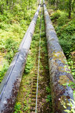Two large black water pipes, converging in distance. Royalty Free Stock Image
