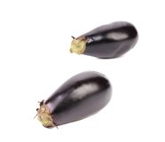 Two large eggplant. Stock Photos