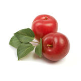 Two large fresh ripe plums nectarines with green leaves, healthy Stock Photography