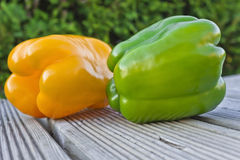 Two large paprika. Two large peppers on a table in the garden Stock Photography