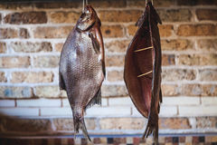 Two large smoked fish hanging on brick wall background Royalty Free Stock Photography