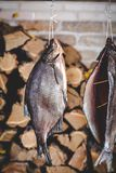 Two large smoked fish hang on background of stacked firewood Stock Photo