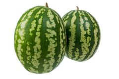 Two large striped watermelon on white background royalty free stock photos