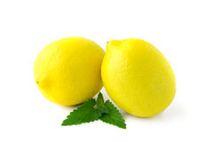 Two large yellow lemons Stock Image