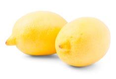 Two large yellow lemons Royalty Free Stock Image