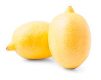 Two large yellow lemons Stock Images