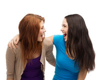 Two laughing girls looking at each other. Friendship and happy people concept - two laughing girls looking at each other Stock Photography
