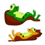 Two lazy frogs who sleep on pebbles, a cartoon on a white background. Vector Royalty Free Stock Image
